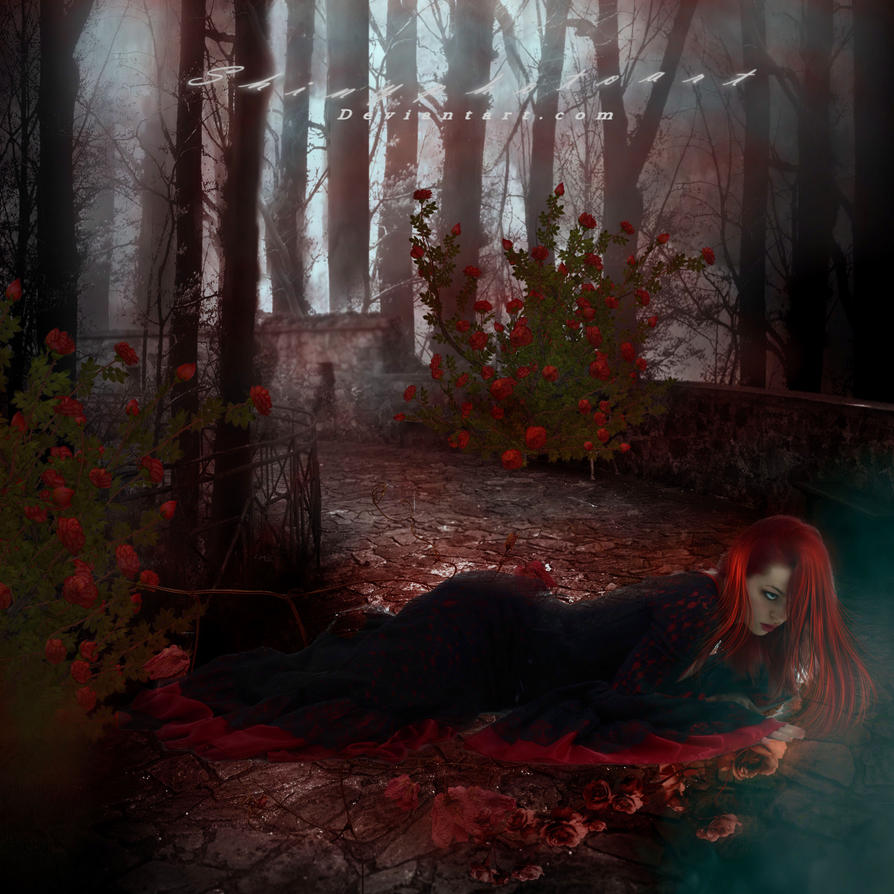 Never Promised You A Rose Garden By Shinyphotoart On Deviantart