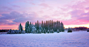 Good morning Finland