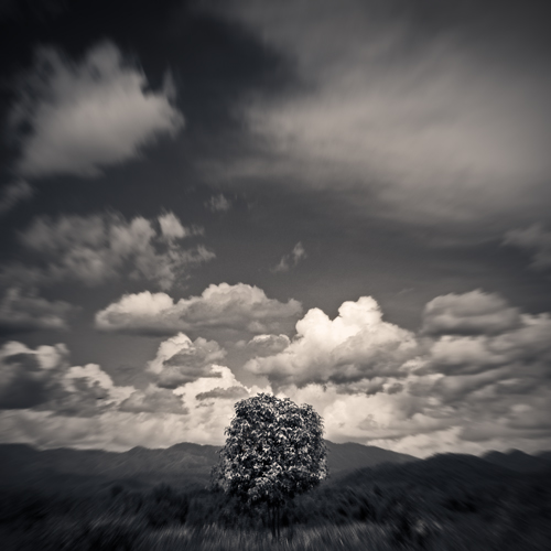 Dreamland VII by Menoevil