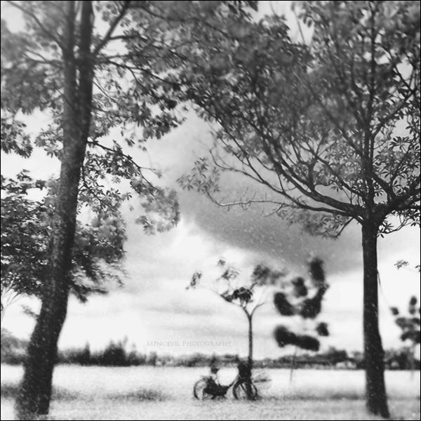 Bicycle by Menoevil