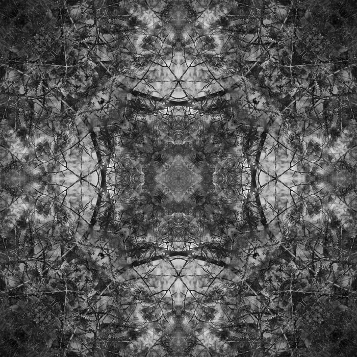 The Origin XXXI by Menoevil