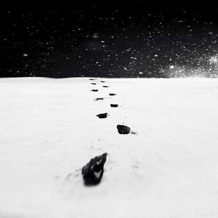 Black footsteps on the white land by Menoevil
