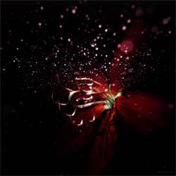 Red petals by Menoevil