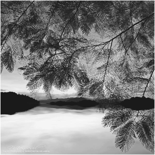 Dreamland XVI by Menoevil