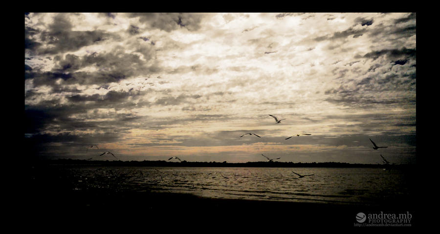 libertad by andreamb