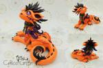 Orange laying Cayo Dragon