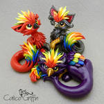 Paco, Rico and Kaiko - the Rainbow Griffins