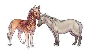 Quagga and Zebro