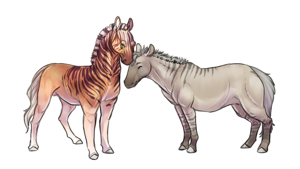 Quagga and Zebro by jamew85
