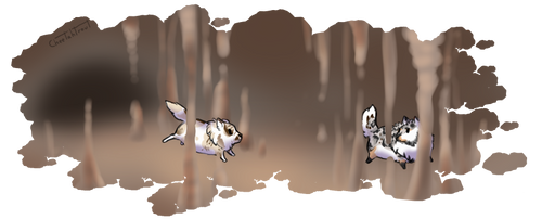 Tokotas spelunking for fluffy 2 by cheetahtrout