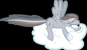 Gray Dashie