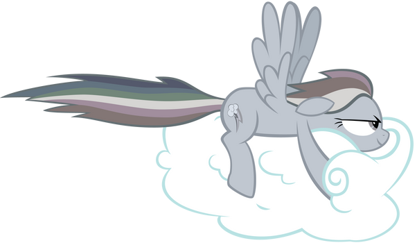 Gray Dashie