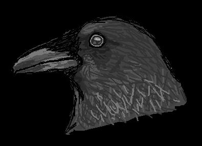 Sketchy Raven by Tenshi-no-Kanashimi