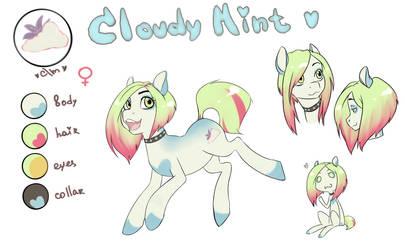 Pony adopt auction - Cloudy [close]