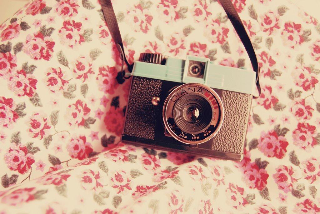 Cute Camera Lover By RobstenLover