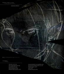 Sentence: back cover by Izabela-Wilson