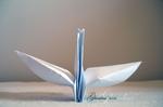 A swan by r-Ghaidaa