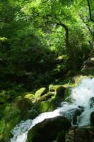 Grza waterfall by djapoviccom