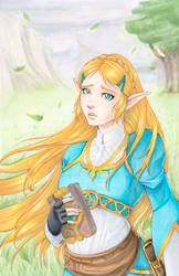 Zelda by Ranefea