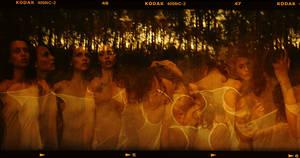 metamorphosis by kaunau