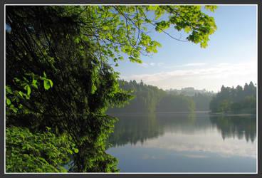 Lakeside morning