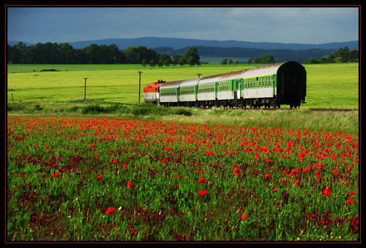 Train to summer