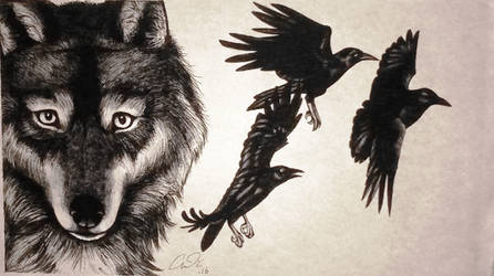 Wolf And Crows
