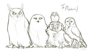 The Owls of Harry Potter