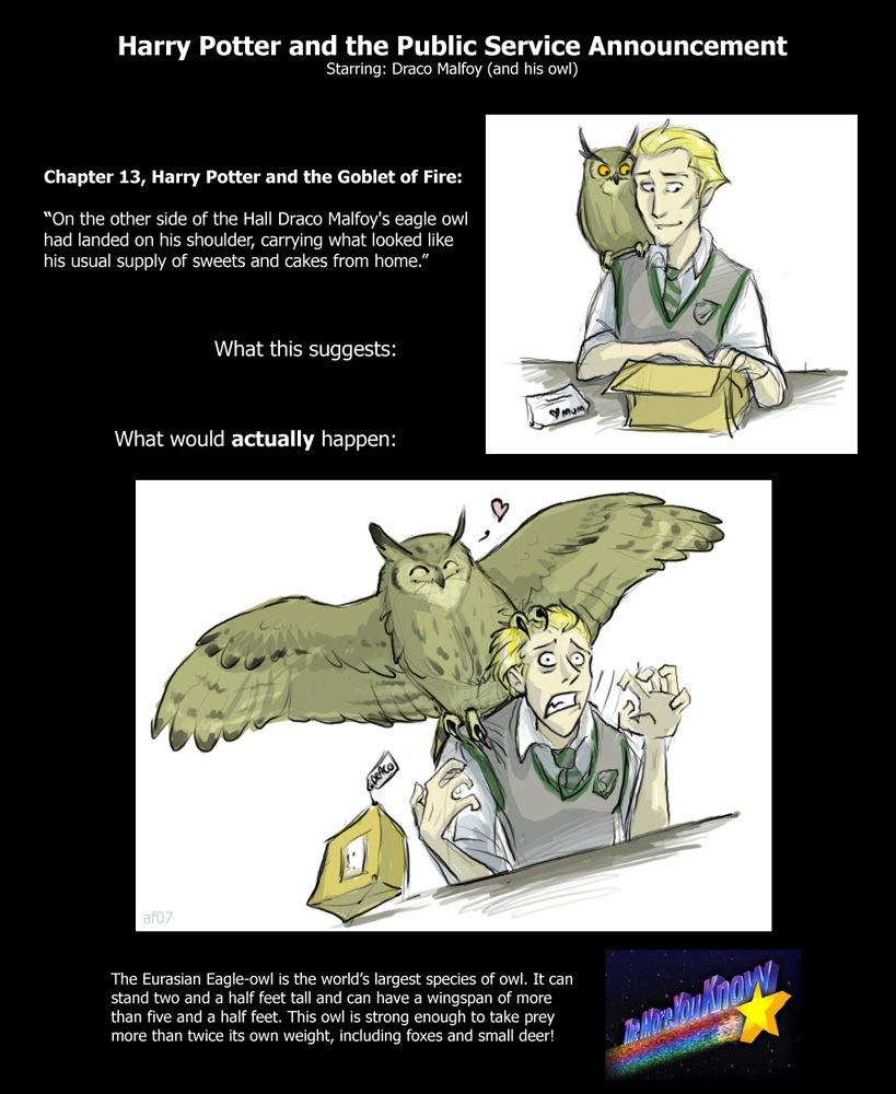 Harry Potter and the PSA by lyosha