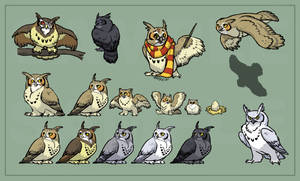 Owls of Noctua