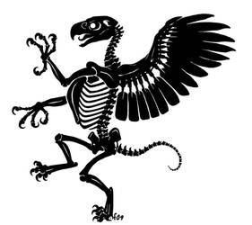 Rampant Gryphon Skeleton