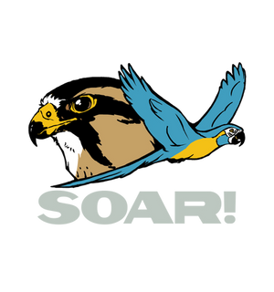 SOAR! - Pocket Logo