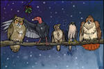 A Wild Bird Clinic Christmas
