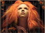 Orange Passion by Cosmopavone