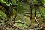 Sandstone and Vegetation by bellabrooke