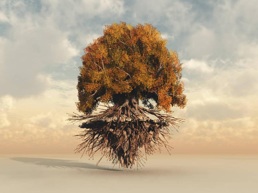 Floating Tree by Lavinia8