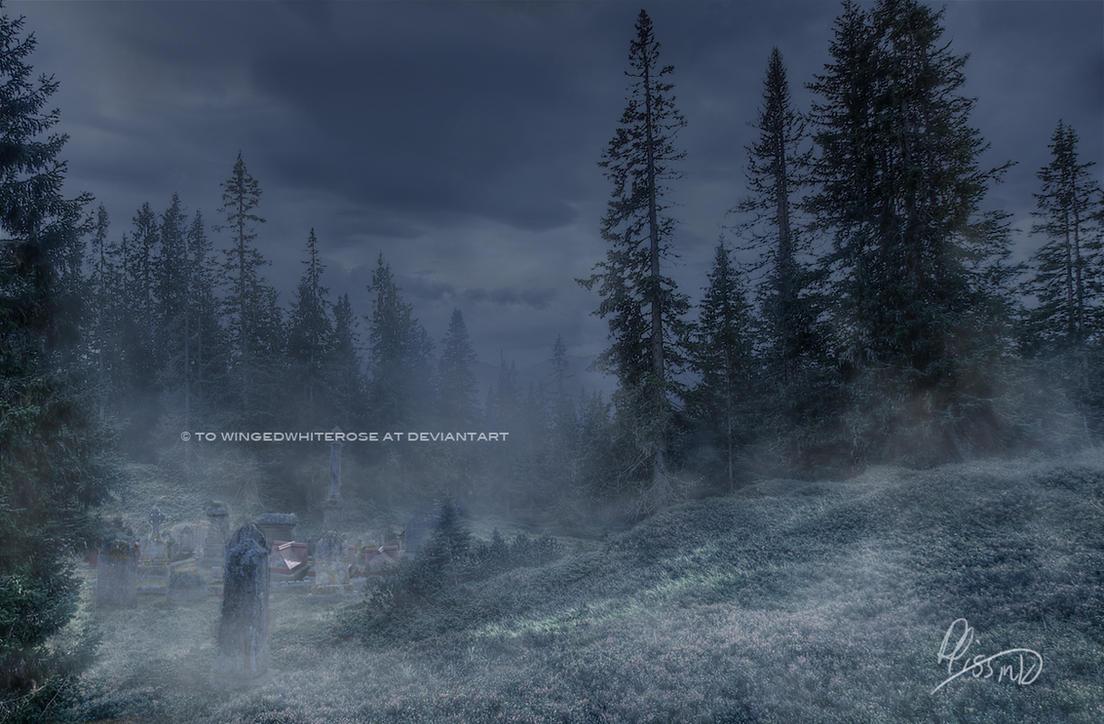 Premade Background Foggy Forest Graveyard