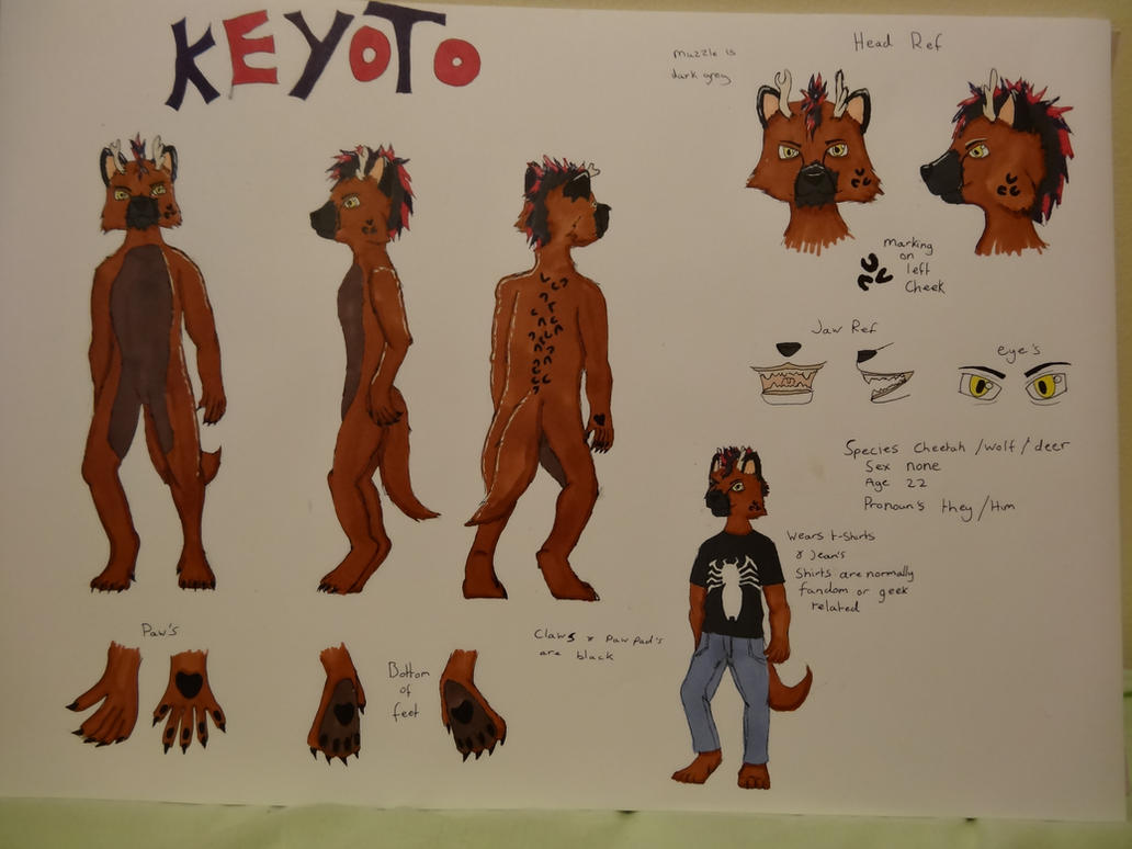 keyoto ref sheet by sasukeharber