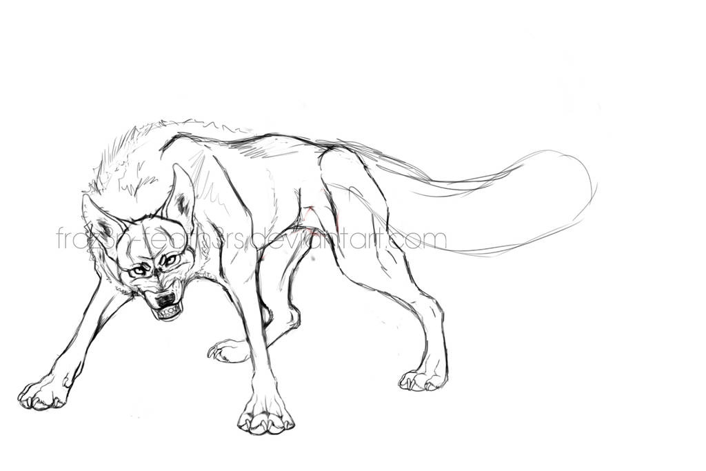 Wolf Sketch by FROZ3N-FEATH3Rs