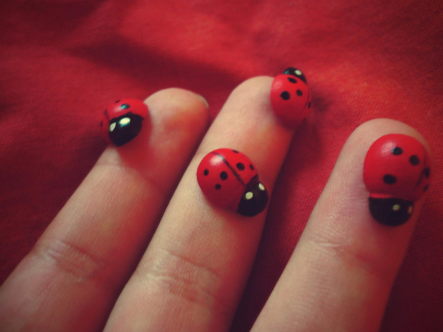 Lady bug2 by catarinamzfernandes