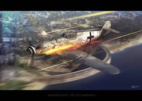 Messerschmitt 109 G6 Seemann