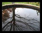 Reflection 2