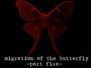 Migration of the Butterfly, 5