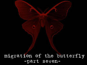 Migration of the Butterfly, 7