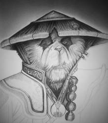 Monk Panda, pencil drawing. Part 5