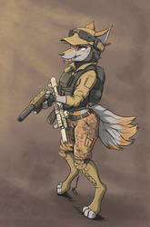 The desert fox. by Stalhammer