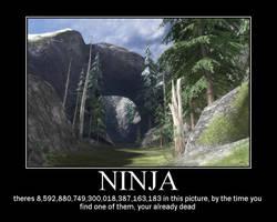 Ninja by ODST-Training
