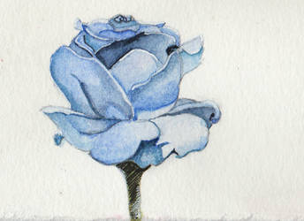 Roses for Judy - Blue by CormorantFeathers