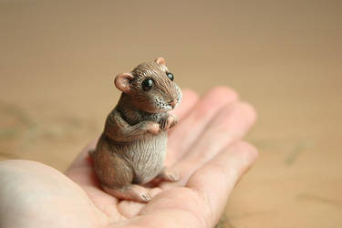 Little critter by Marika-Spijkers