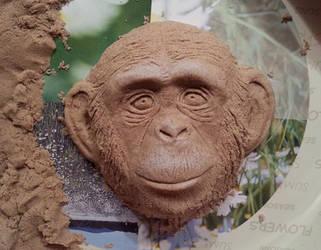 Chimp by Marika-Spijkers